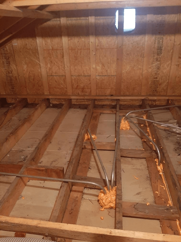 Insulation Removal 4