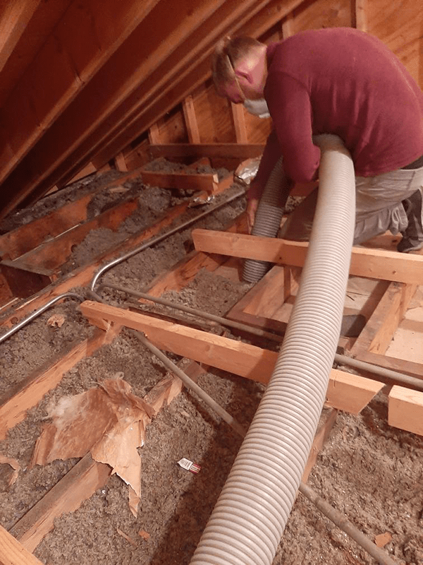 Insulation Removal 2